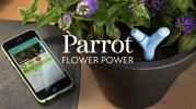 Flower Power (c) Parrot
